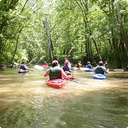 Guided Canoe And Kayak Tours And Trips On The Potomac River